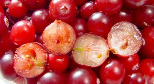 Cranberrie of cranberry-g